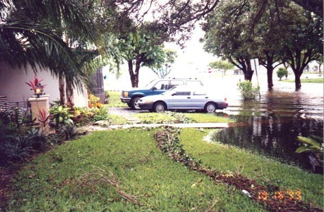 front yard after hurricane went by